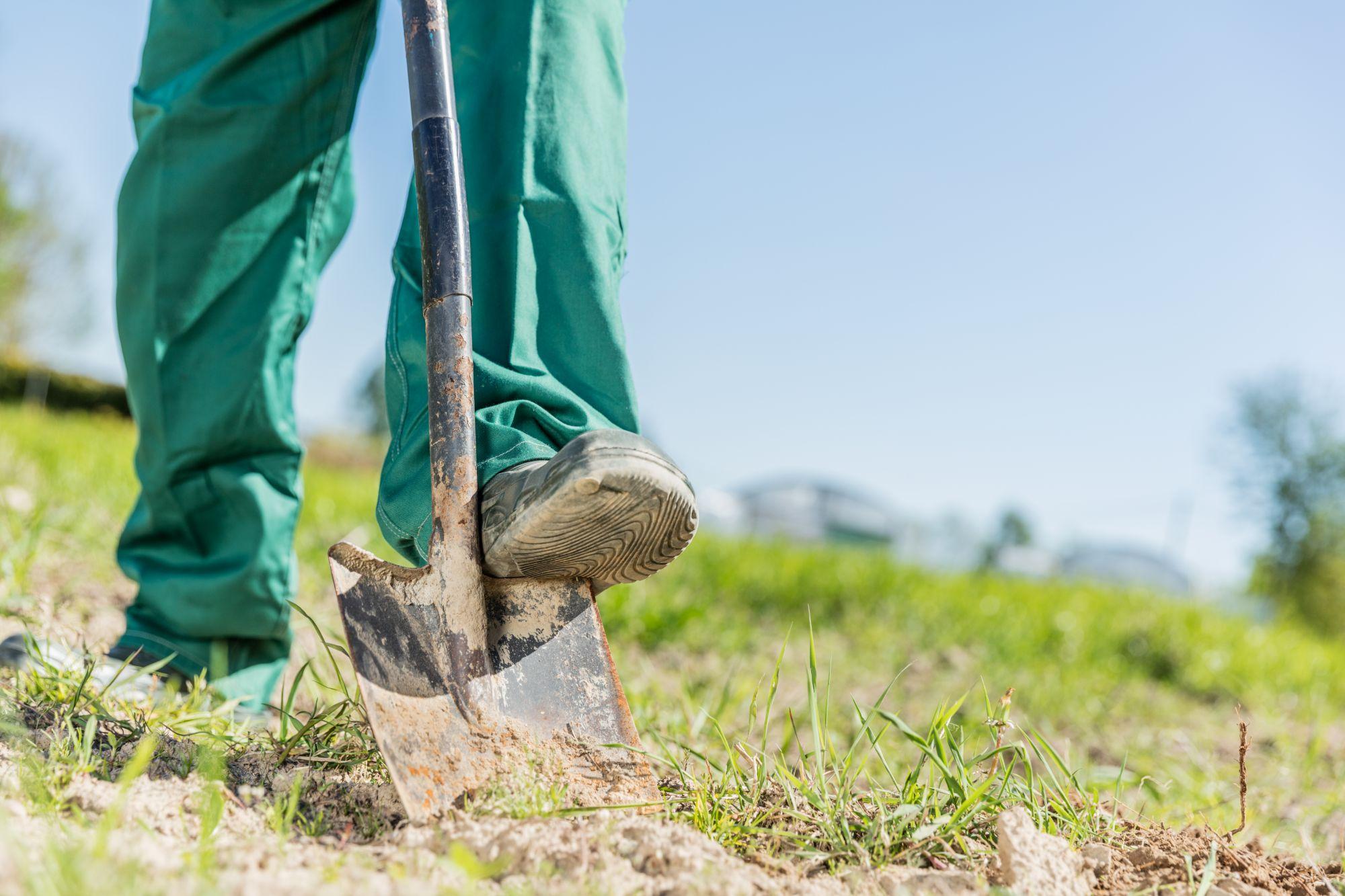 gardener-digging-in-a-garden-with-a-shovel-PLEBDE4