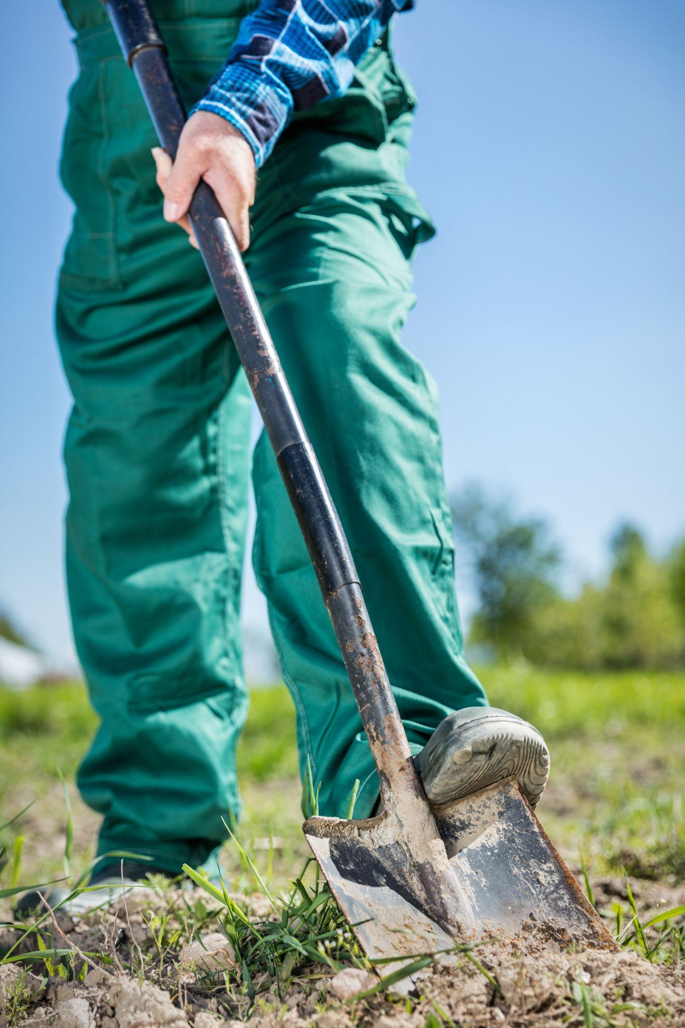 gardener-digging-in-a-garden-with-a-shovel-PMZAYJK