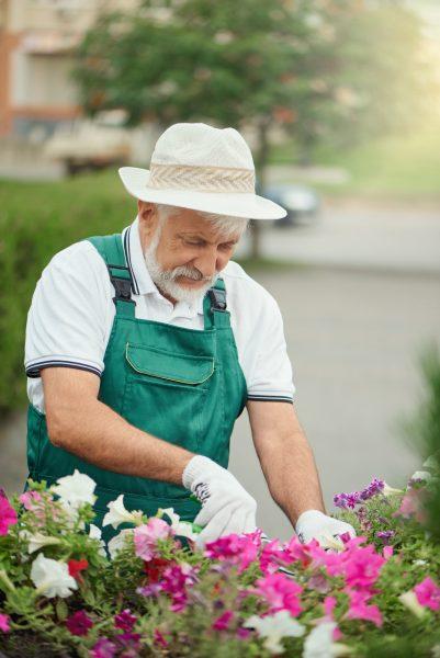 Retraite a la jardinerie